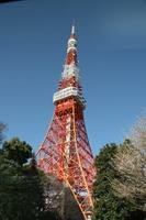 Tokyo Tower Tokyo Travel Guide
