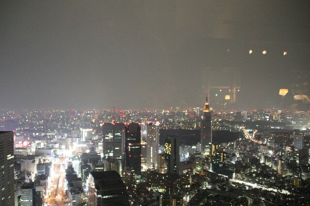 View from New York Grill Bar Nishi-Shinjuku